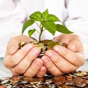 Как правильно начать инвестировать